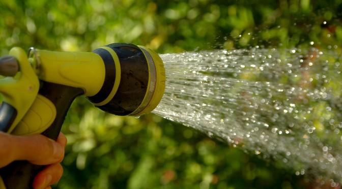 watering-1601143_1920