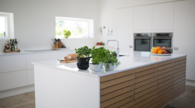 green-leafed-plants-on-kitchen-island-1358900